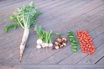 061029今日の収穫