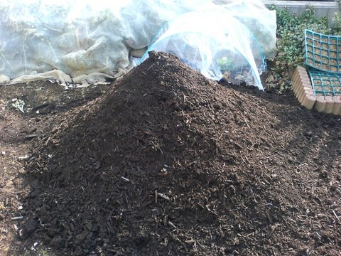 070309ハーグ堆肥P1000032.jpg