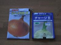 080309ホームタマネギ種球作りIMG_7396.jpg